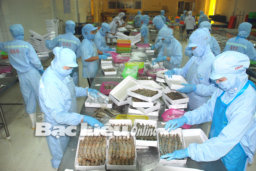 Doanh nghiệp nỗ lực đảm bảo sản xuất phát triển